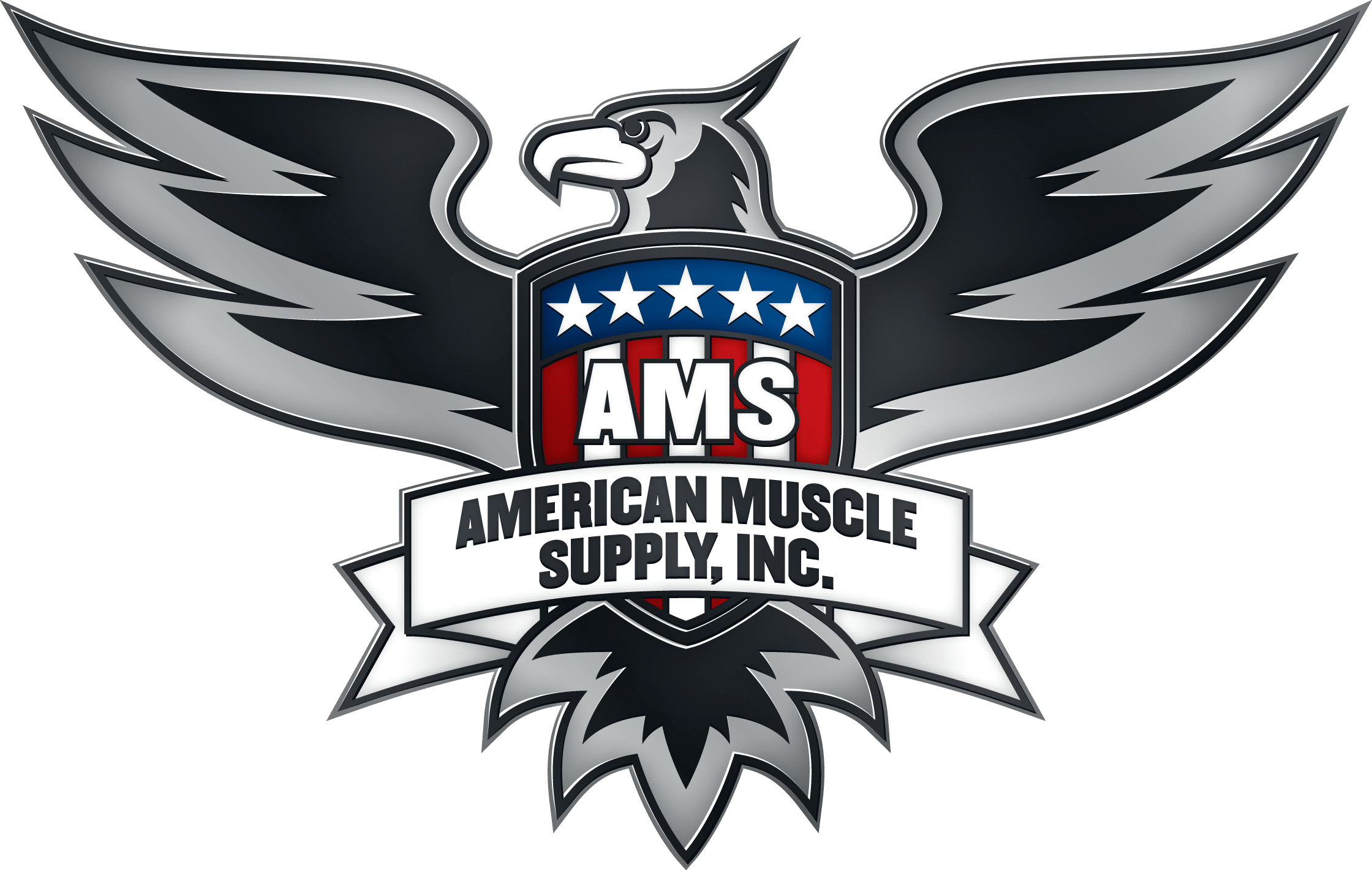 AMS Logo Color Shaded